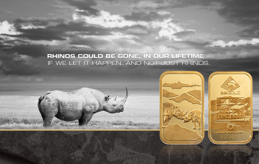 Rhinos could be gone, in our lifetime — If we let it happen. And not just rhinos.