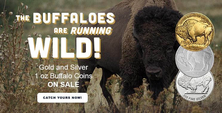 Gold & Silver Buffalo