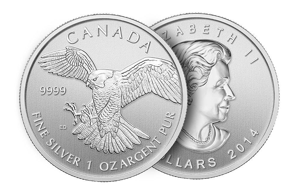 2014 1 oz Silver Peregrine Falcon Canadian Birds of Prey Series Coin, image 2