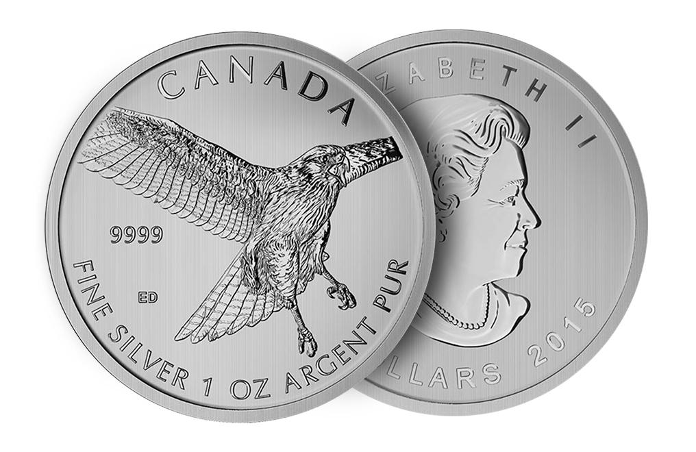 Buy 2015 1 oz Silver Red-Tailed Hawk Coins - Canadian Birds of Prey Coin Series, image 2