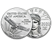 Buy 2020 1 oz Platinum American Eagle Coins, image 2