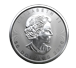 Buy 2020 MintFirst™ 1 oz Platinum Maple Leaf Coins (tube of 10), image 2