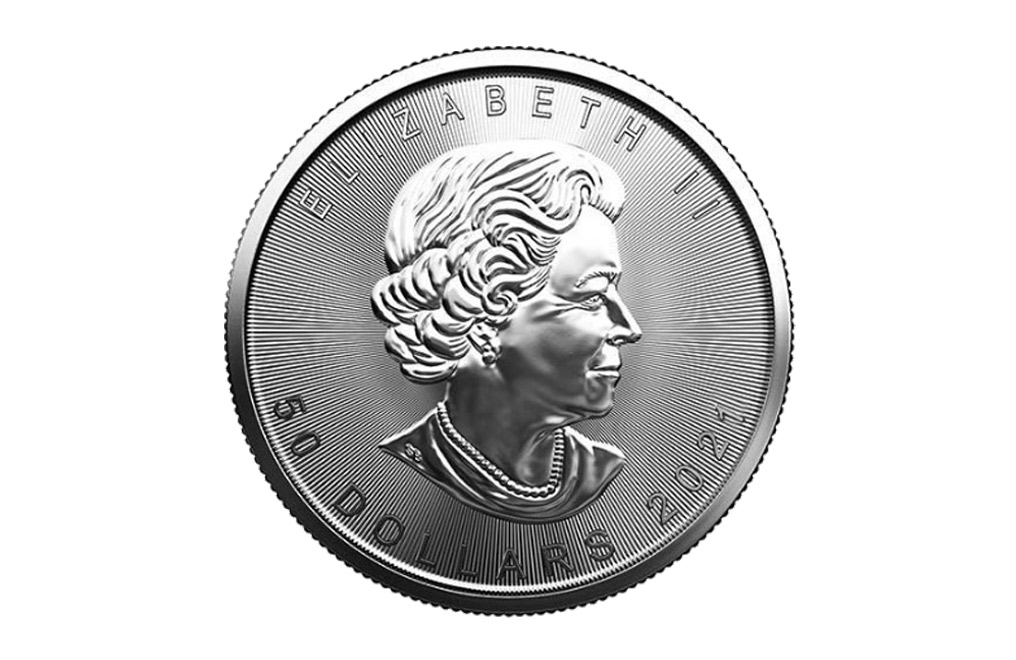 Buy 2021 MintFirst™ 1 oz Platinum Maple Leaf Coins (tube of 10), image 2