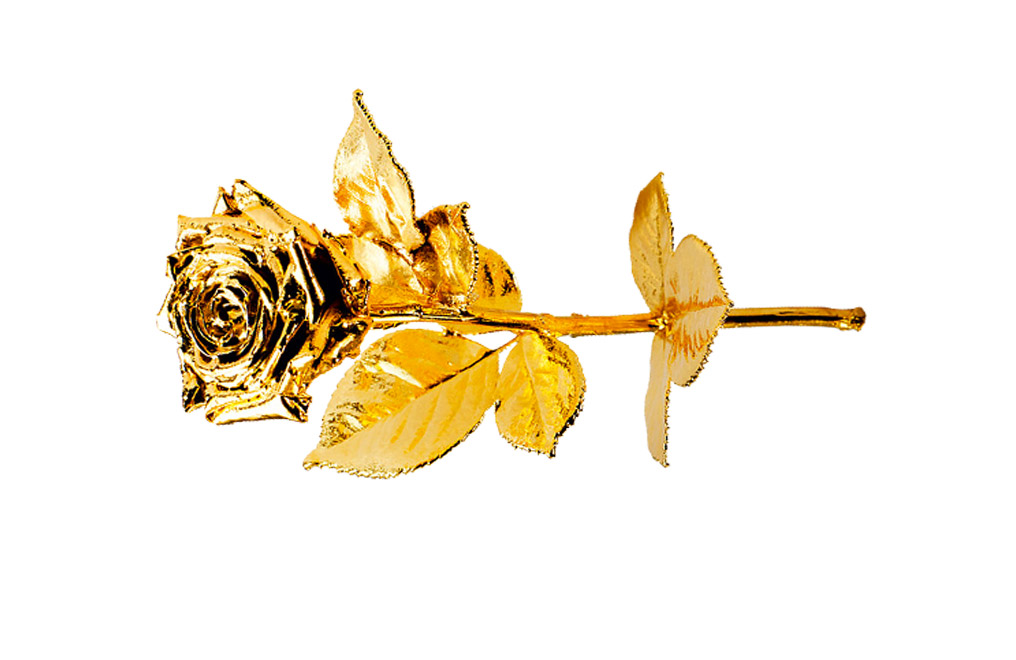 Buy Gold Plated Roses - Real Long Stemmed 40 cm, image 2