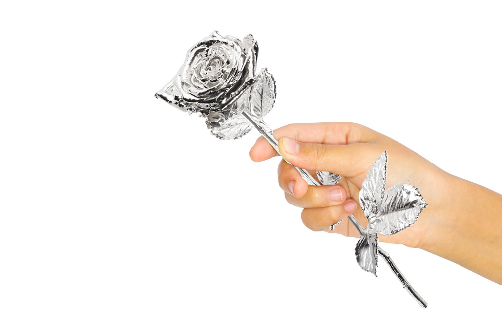 Buy Silver Plated Roses - Real Long Stemmed 40 cm, image 1