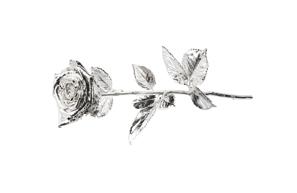 Buy Silver Plated Roses - Real Long Stemmed 40 cm, image 2